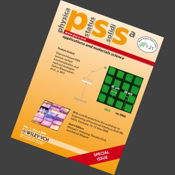 Cover article in Physica Status Solidi (a) 2009